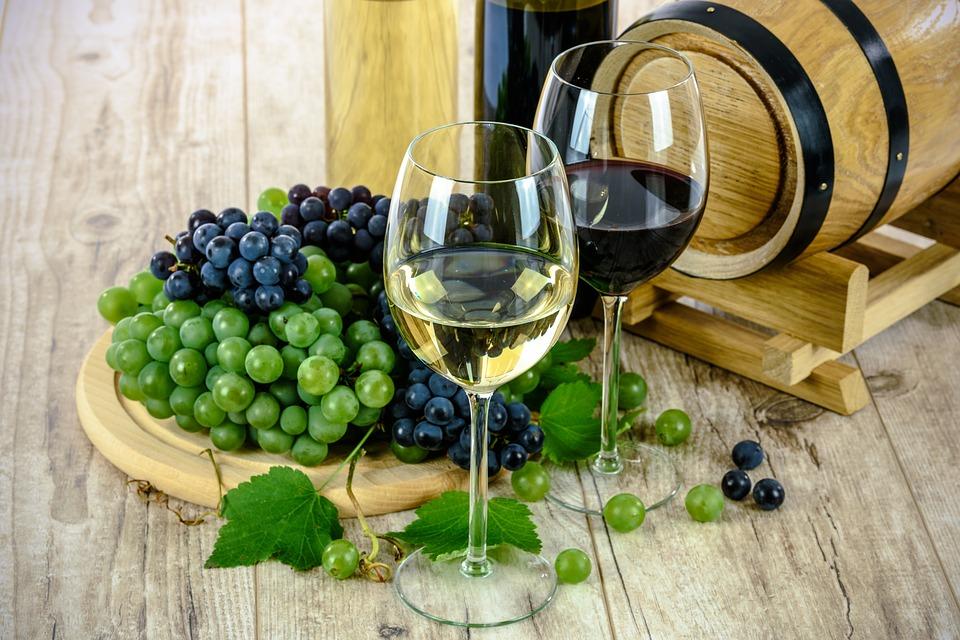 wine tour wine tasting